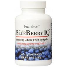 프룻패스트 블루베리 Blue Berry IQ 60 소프트젤